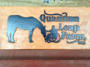 Attorneys Volunteer at Quantum Leap Farm