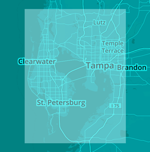 Lyft in Tampa instead of DUI